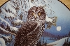 "**MBA #3696   ""Grey Owl By Canidian Artist Terry McLean"