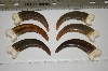 Set Of 6 Large Faux Grizzly Bear Claws