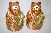 New Large Brown Bear & Fish Salt & Pepper Shakers