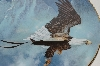 "**1988  Ted Blaylock ""American Bald Eagle"" Collectors Plate"