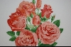 "**1977 ""First Addition"" All American Rose Selections"