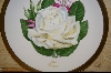 """Honor""  American Rose Society Plate 1980"